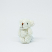 Small white fluffy Teddybear