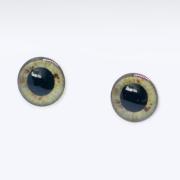 Eyechips Puppelina Brown M1-M-002